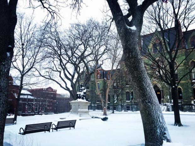 snowy penn